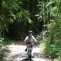 Bamboo forest cycling tours with Jack Marnon