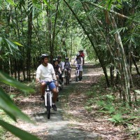 Bamboo forest cycling tours with Justina and friends
