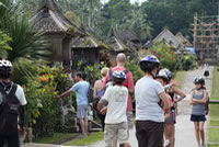 penglipuran bali traditional village photos #04
