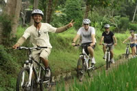 Rice paddies Bali cycling tracks photos #1