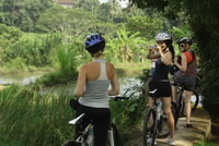 Rice paddies Bali cycling tracks photos #2