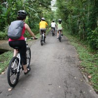 green countryside cycling