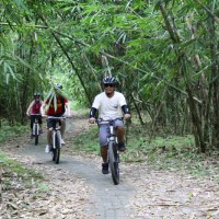 bamboo forest cycling tracks