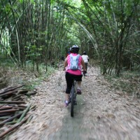 biking inside te forest