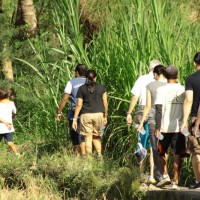 rice field trekking photo #01