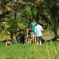 rice field trekking photo #06