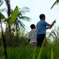 rice field trekking photo #11