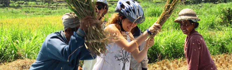 Bali S Countryside Bike Tour Itinerary Ultimate Premium