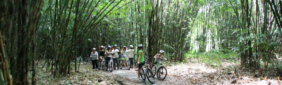Family bike tours in Bali