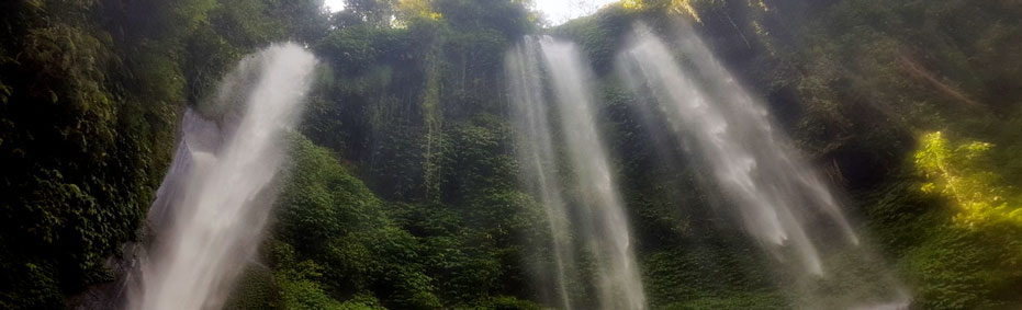 Sekumpul waterfall trekking tour