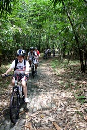 bamboo forest cycling routes