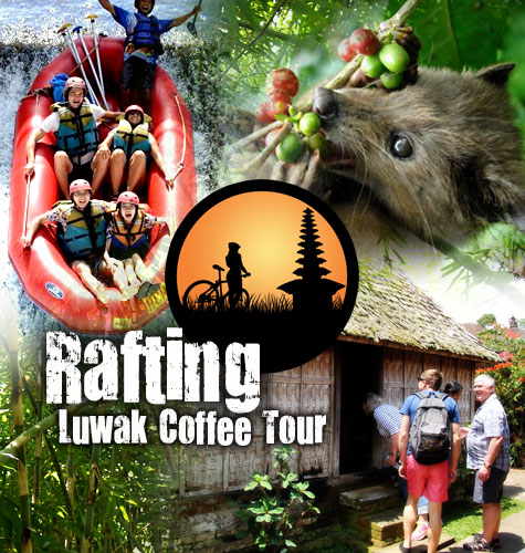Rafting + Coffee Tour
