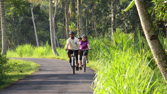 rice paddies bali cycling tour