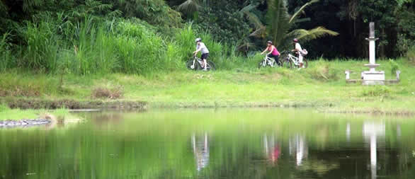 Cycle through beautiful small lake around Pura Taman