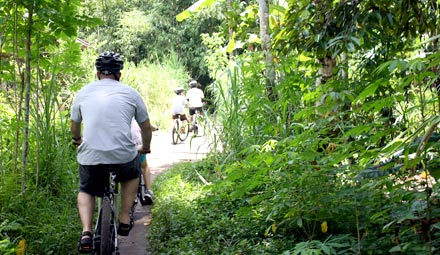 Family cycling through green countryside backroads bali