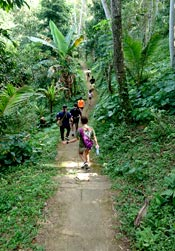 Kuning waterfall trek