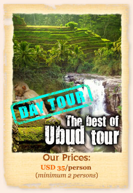 Private day tours - The Best of Ubud
