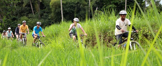 rice paddies routes