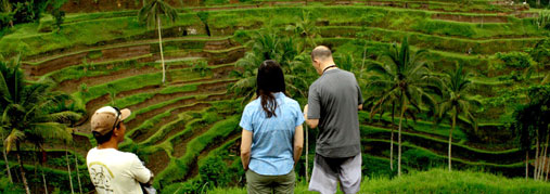 splendid view of tegallalang rice terraces