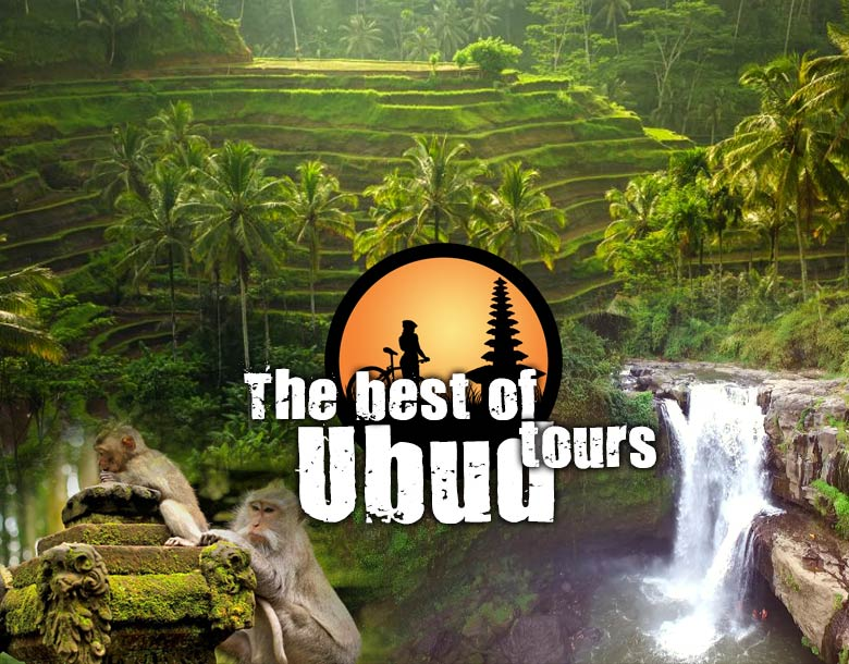 The Best of Ubud Tour